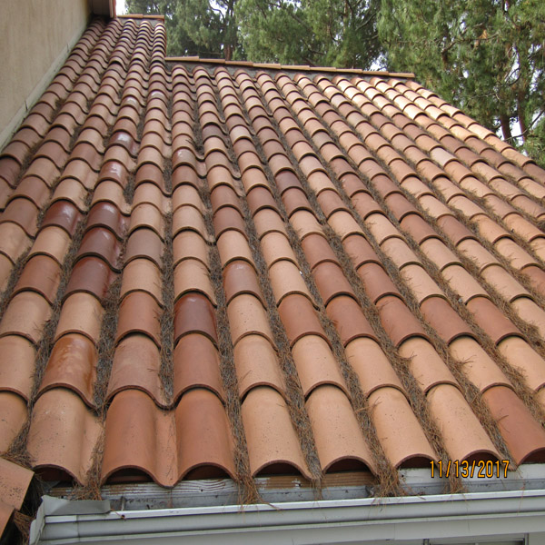 Roof Debris Cleaning & Rain Gutter Cleaning