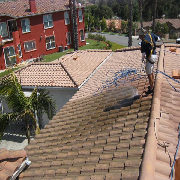 Roof Cleaning Tech